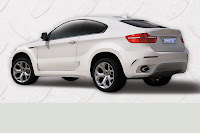 BMW X6 Coupe 6 BMW X6 Coupe Conversion