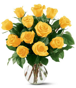 Dozen Of Yellow Roses picture