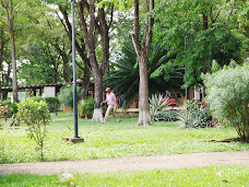 Extensas áreas verdes en armonía