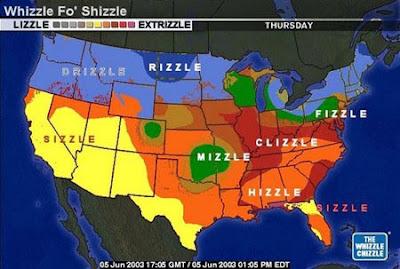 shizzle.jpg