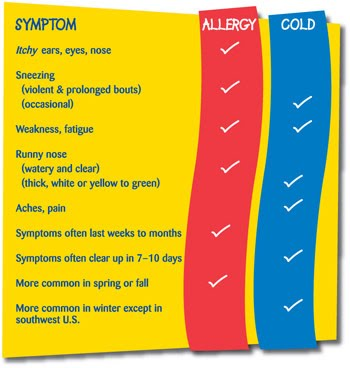 common cold symptoms. 2011 hair Common Cold symptoms