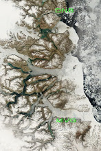 Satellite pictures/Sea-ice