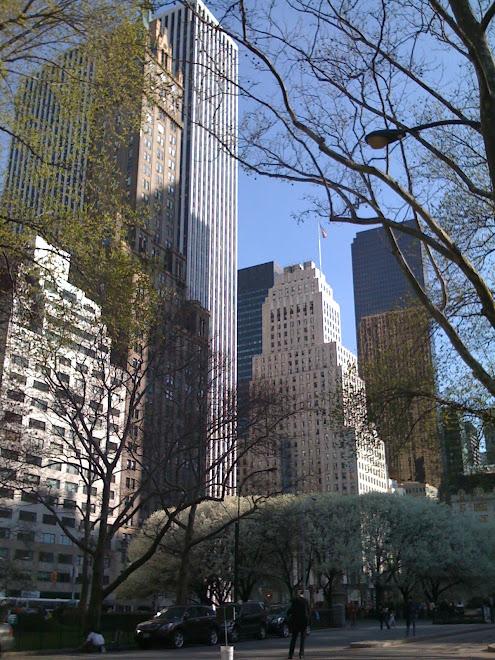 New York, NY, (USA)
