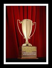 1º Trofeo Marochos en la Red al mejor Blog 2008