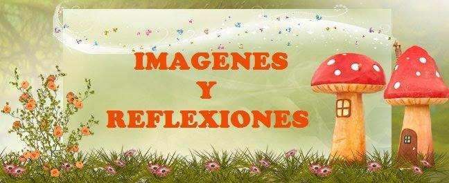 IMAGENES Y REFLEXIONES