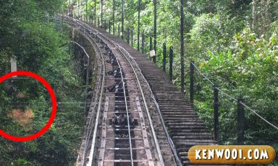 penang hill ghost face