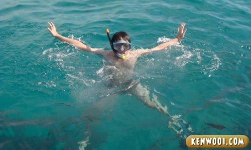 redang snorkeling
