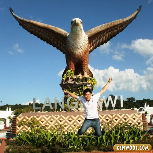 langkawi eagle flying