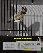 Medalla de Bronce en el Mundial de Matosinhos y Campeón de España Masque 2009