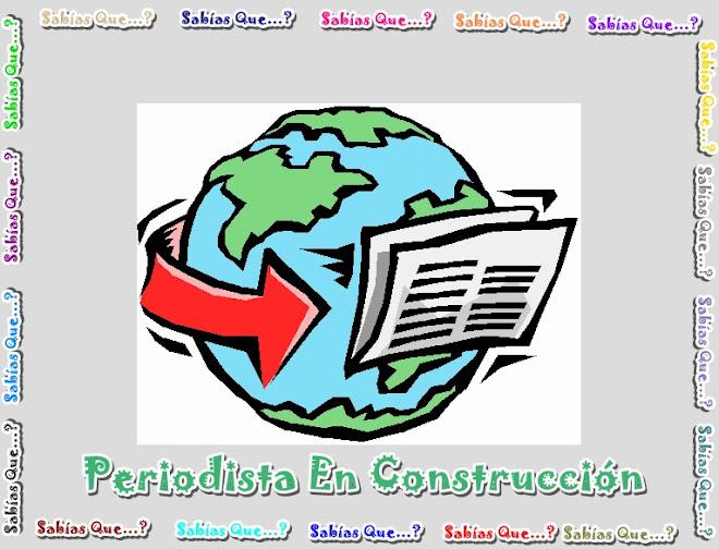 Periodista en Construccion