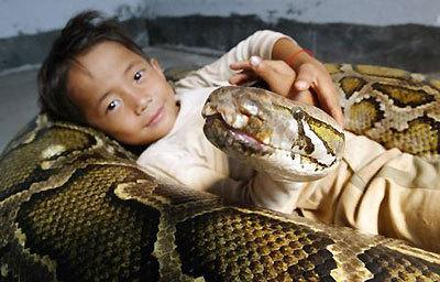 Python linux thai teen