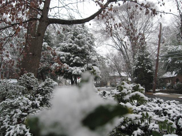 [snow107]