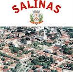 Salinas - MG