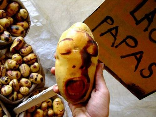 [potato_portraits_09.jpg]