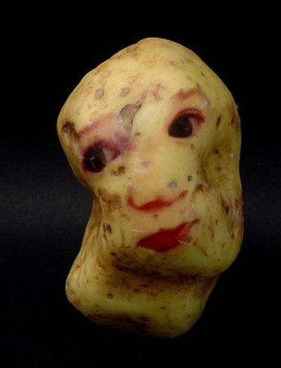 [potato_portraits_19.jpg]