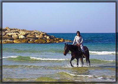 наездница, девочка и лошадь