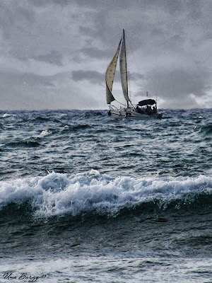 парусник на море