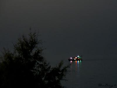 ночной кораблик