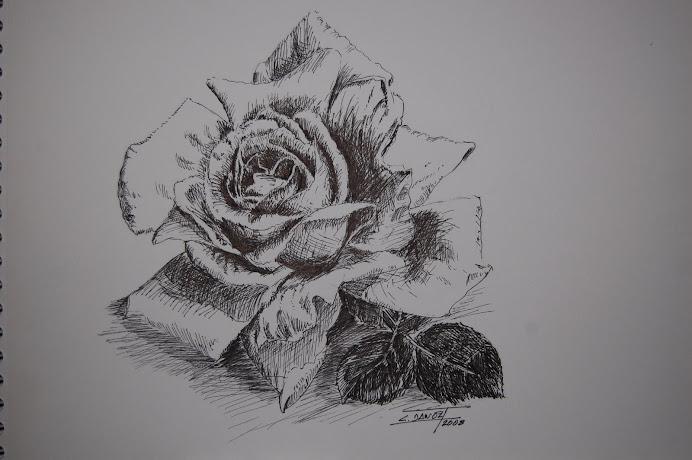 Dibujos del autor