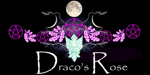 Draco's Rose