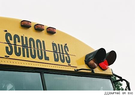 [schoolbus450px.jpg]
