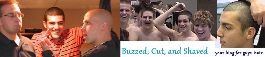 Buzzed, Cut, and Shaved Male Hair
