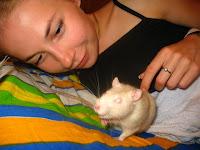 Мій пацюк Міккі