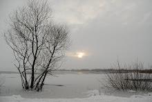 Månadsbilden 2010 november