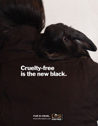 This blog is fur free