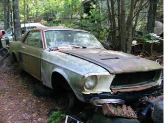 Over On Mustangforums Com A Member Somehow Stumbled Upon A  Plus Acre Mustang Junkyard In The Middle Of Nowhere In Rhode Island