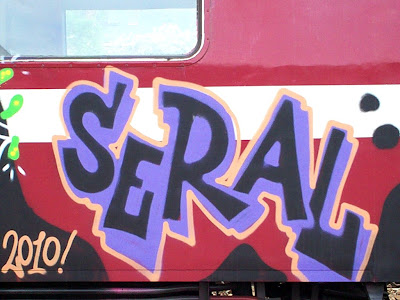 THE LETHAL POISON graffiti crew including seral and petar