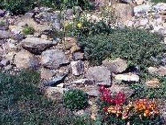 Orti e giardini marzo 2010 - Creare un giardino roccioso ...