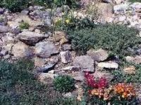 orti e giardini giardino roccioso