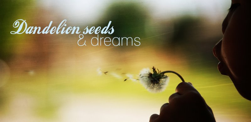 Dandelion Seeds and Dreams