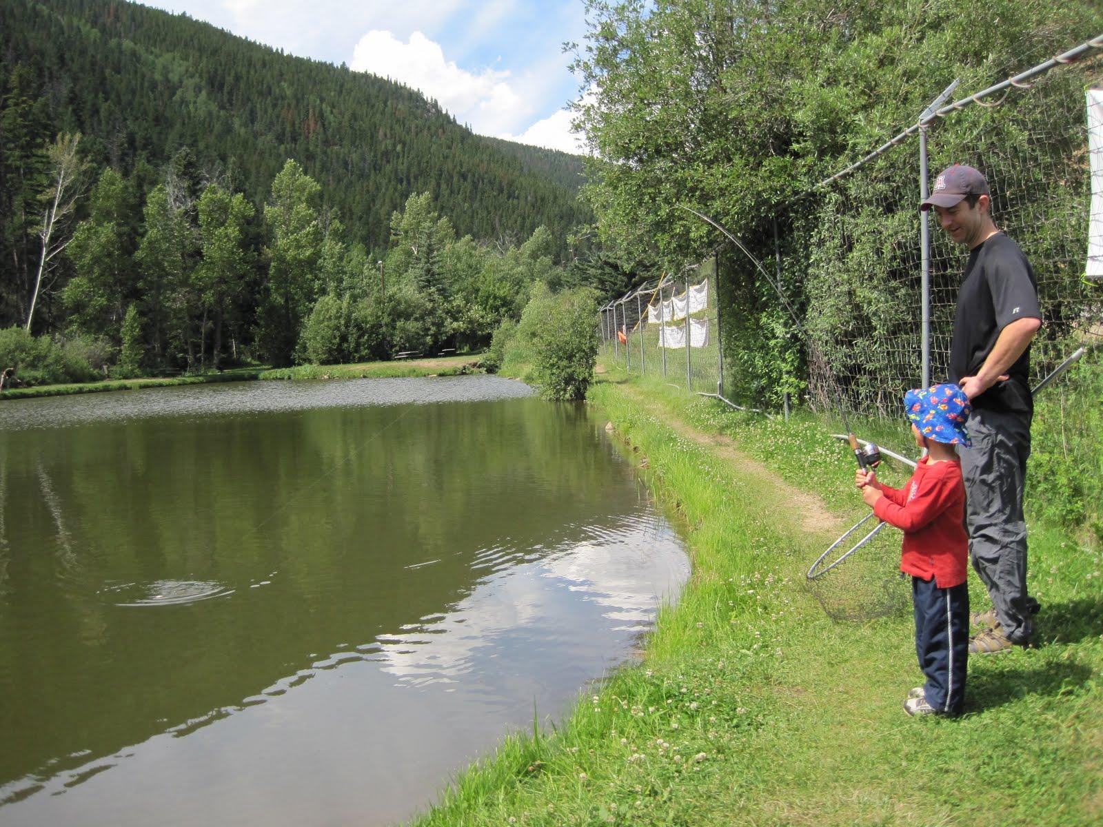 Fun ... Fishing Fish in Gresik Rice Pond