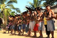 Festa Indigena
