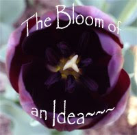 The Bloom of an Idea
