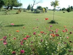 Primavera en Cayastá