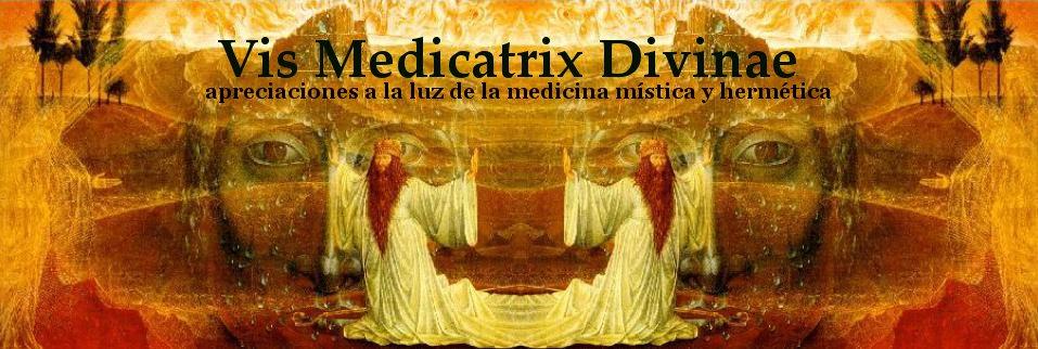 Vis medicatrix divinae