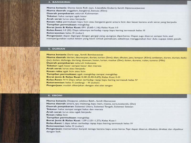 Berikut adalah jenis-jenis kayu di indonesia