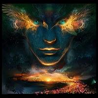 David Wilcock Divine Cosmos