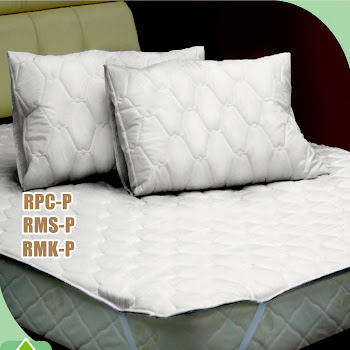 Pillow  & Protector