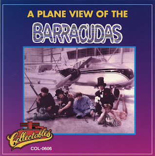 Power Pop Lovers The Barracudas A Plane View Of The