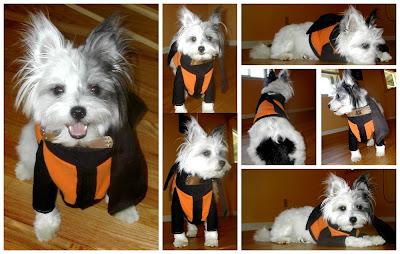 Animales cosplayando Pup_Cosplay_Fun___Naruto_by_RedKeurimja