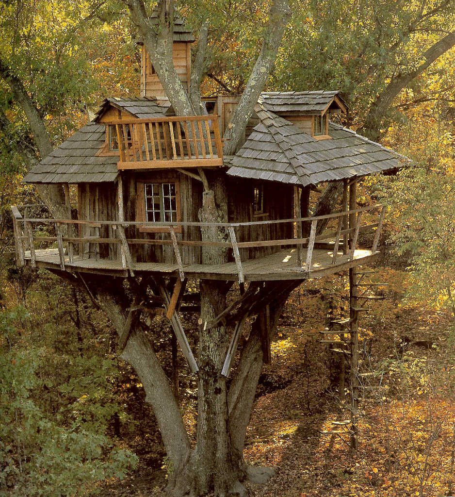 Bohemian Pages These Are Not Our Childhood Tree Houses