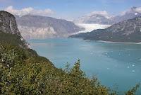 Le glacier Muir en 2004.