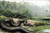 Illustration d'un Titanoboa cerrejones. Document NGS/Nature.