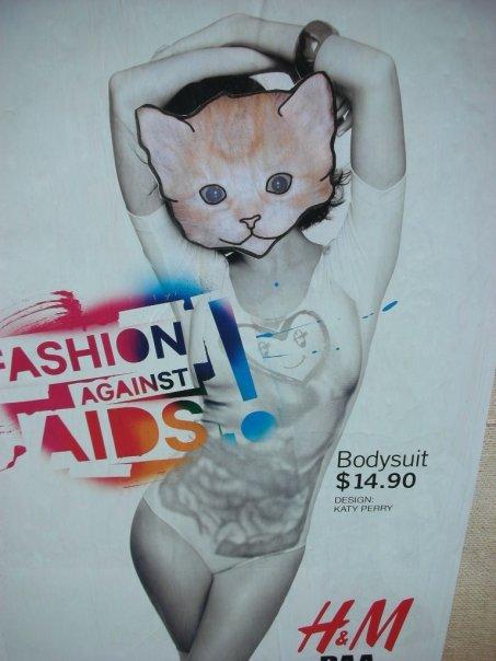 [kittens.jpg]