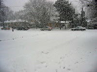 Toronto snow picture