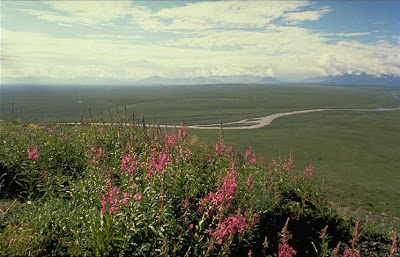 Free Landscape Picture, Landscape Photos - Landscape Pictures